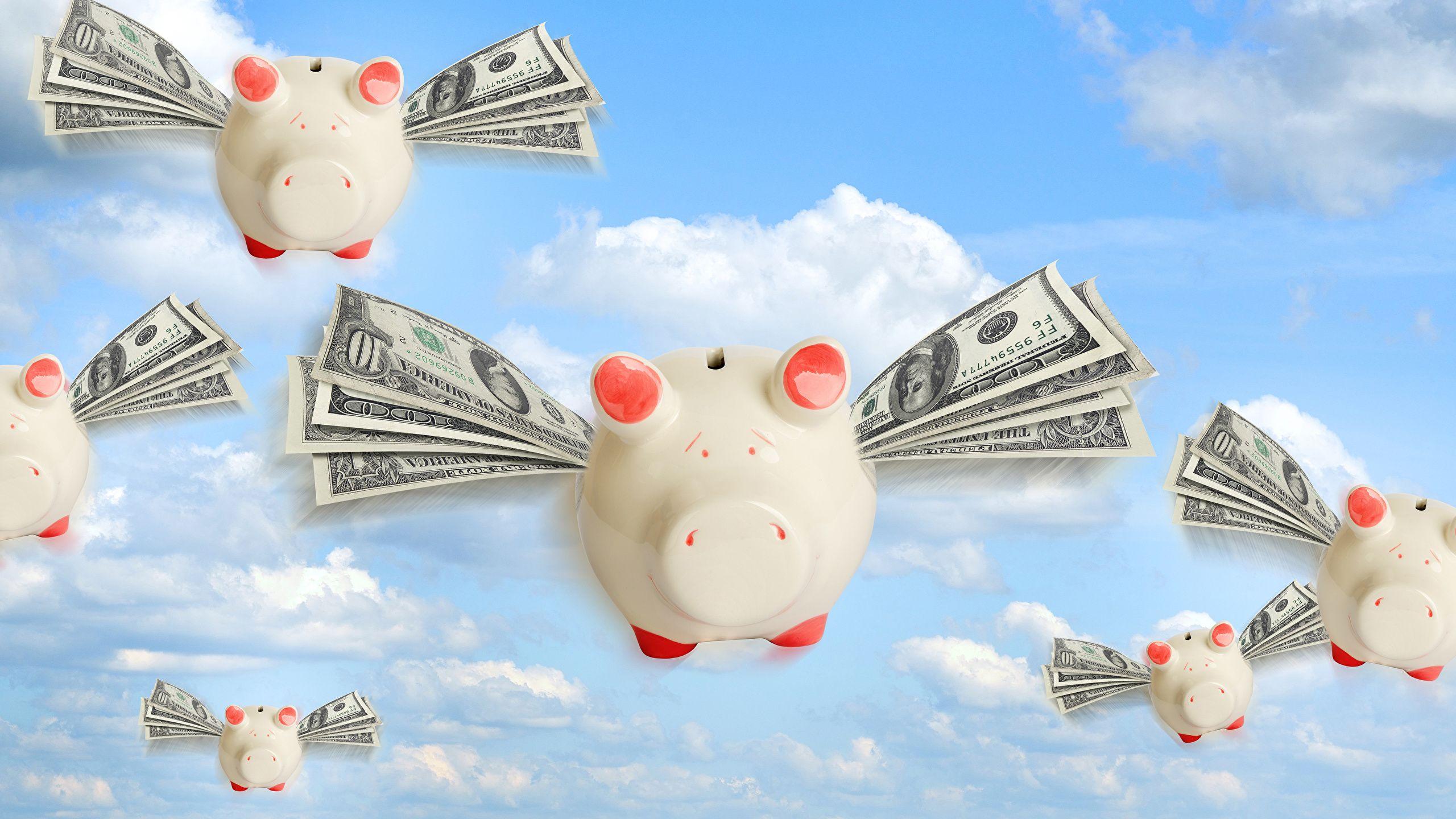 dominacion financiera - findom
